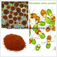 Buy cheap Anti cancer eye protecting Natural Salt algae extract,salt algae powder from wholesalers