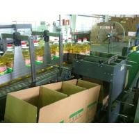 Buy cheap Automatic Case Filling Packaging Machine from wholesalers