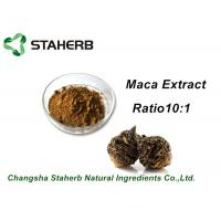 Buy cheap Medical Herbal Extract Ratios Maca Root Extract Powder 4:1 For Male Health Care Product from wholesalers