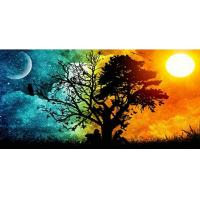 Buy cheap Diamond Panting Scenery Tree Nature Moon Full Square Drill Cross Stitch 5D DIY Diamond Embroidery Decor from wholesalers