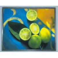 Buy cheap M170EG01 VG 17\'\' AUO LCD Panel  from wholesalers