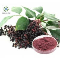 Buy cheap Black Elderberry Immune Support Elderberry Fruit Powder product