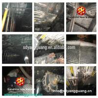 Buy cheap High Quality Polyester Mining Geogrid Mine Grid Coal Mining Grid by Liba Karl Mayer Made from wholesalers