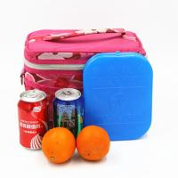 Buy cheap SAP / CMC Refillable Ice Pack Plastic Freezer Gel Packs For Cooler Box from wholesalers