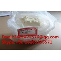 Buy cheap Safe Trenbolone acetate Finaplix H / Revalor-H  Tren acetate with Low Price from wholesalers