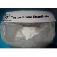 Buy cheap Testosterone Enanthate Powders HPLC Tested 99% in performance enhancing cycles from wholesalers