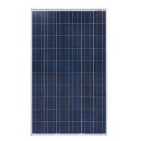 China 305W Crystal Poly PV Module Dark Blue Frame Cable Connector Easy Installation on sale