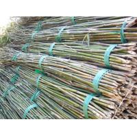 Buy cheap Functional  Bamboo Pole Wear Resistant Environmental Friendly 0.1-12m Length from wholesalers