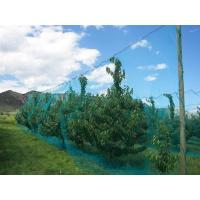 Buy cheap Warp Knitted Covering Fruit Tree Insect Screen Mesh Bag Protection Netting from wholesalers
