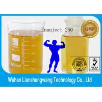 Buy cheap Injectable Anabolic Steroid Oil Testosterone Enanthate / Enanject 250 for Weight Loss Test E 250 CAS 315-37-7 from wholesalers