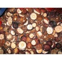 Buy cheap Sell hot sale wild mushroom from wholesalers