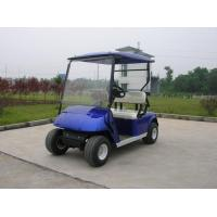 2-seat Electric Golf Cart