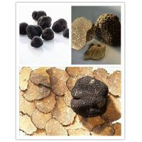 Buy cheap Black Truffle Black Truffle Powder from wholesalers