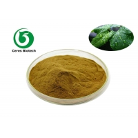 Buy cheap Mint Flavor Powder 80 Mesh Peppermint Extract Powder from wholesalers