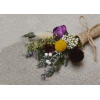 Buy cheap Eternal Dried Floral Arrangements , Colorful Miniature Dried Flowers For Table from wholesalers