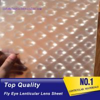 Buy cheap PLASTIC LENTICULAR clear fly-eye plastic sheet fly eye lens film material with 360 3d effect from wholesalers