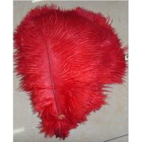 Buy cheap Multicolor ostrich feather/plumage for wedding centerpieces product
