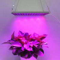 Buy cheap Indoor Garden LED Panel Grow Light With Meanwell Driver , 10mm Thickness product