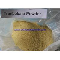 Buy cheap Anabolic 99% Assay Trenbolone Powder 100mg 10161 33 8 For Weight Loss And Increase Muscle from wholesalers