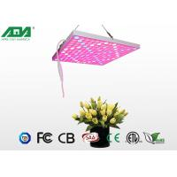 Buy cheap 50W Fashionable Led Growing Light , Led Full Spectrum Grow Lights For Indoor Gardening from wholesalers