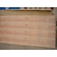 Buy cheap CDX Grade Plywood (PLY093) from wholesalers