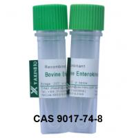 Buy cheap Recombinant Enterokinase Enzyme and CAS 9017-74-8 Enzyme Enterokinase from wholesalers