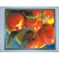 Buy cheap LTM190M2-L01 19'' Samsung LCD Panel from wholesalers