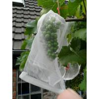 Buy cheap 100% HDPE UV Radiation Agents 3% Fruit Tree Covers , Bags To Cover Fruit On Trees from wholesalers