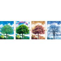 Buy cheap Sheng Qi Season 3d 300*400mm flips pet lenticular picture posters with factory price for selling from wholesalers