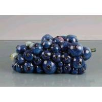 Buy cheap Blueberries Lacquer from wholesalers