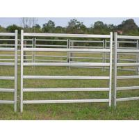 Buy cheap 2.1m econo gate in frame/40x40mm square tube horse round pens/6 cross bars cattle yard panels for Australia/New Zealand from wholesalers