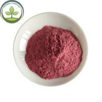 Buy cheap Wholesale Instant Powder Drink  Dried Waxberry In Bulk from wholesalers