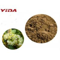 Buy cheap YIDA GMP Certification Dodder Seed Extract Powder Remedy Sexual Problems product