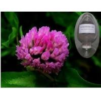 Buy cheap Lowest price red clover extract8%~40%isoflavone, red clover for women's health, red clover extract powder from wholesalers