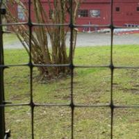 PP Bi-oriented Deer Fence, Vegetable Garden Fence, Wire Mesh Fence, Deer Netting
