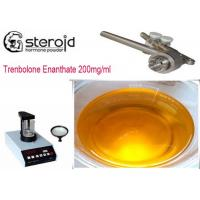 Buy cheap Trenbolone Enanthate 200mg/ml Oil Based Steroids CAS 10161-33-8 For Mass Gaining from wholesalers
