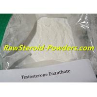 Buy cheap 315-37-7 Testosterone Powder , Testosterone Enanthate Dosage Bodybuilding from wholesalers
