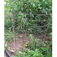 Buy cheap tomato plant cage / heavy duty tomato cage / spiral tomato cage from wholesalers