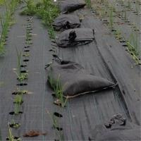 Buy cheap PP nonwoven mulching film anti grass cloth ground cover control weed mat from wholesalers
