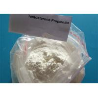 Buy cheap Test Prop Testosterone Propionate Raw Powder 99.17% USP33 Anabolic Steroid from wholesalers