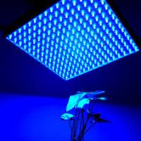 Buy cheap IP44 LED Panel Grow Light For Medical Plants / Greenhouse , High Brightness from wholesalers