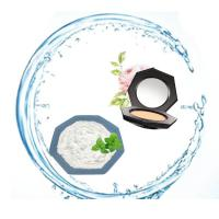 Buy cheap Cas 51115-67-4 Ws23 Cooling Agent Synthetic Flavou For Concealer Cosmetics from wholesalers