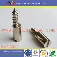 Buy cheap Nickel Plated Cylinder Head Slotted Screw for Lock from wholesalers