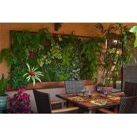 Buy cheap HOT SALE Artificial green wall plants art plants wall plastic plant green wall decoration from wholesalers
