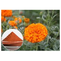 Buy cheap Eye Care Natural Flower Extracts Anti Oxidation Orange Red Powder Lutein From Marigold Flower from wholesalers