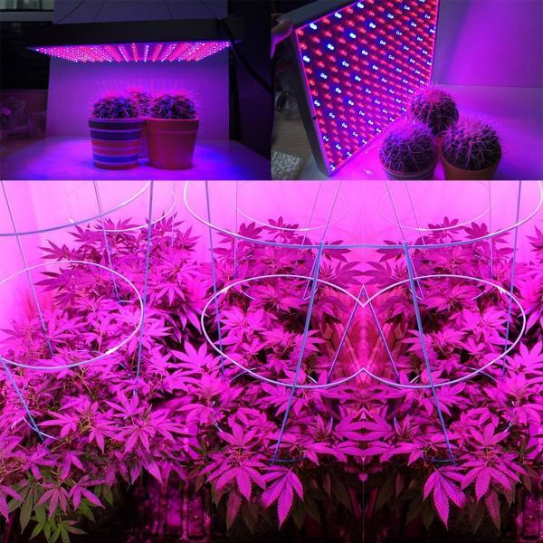 Quality 1000 Watt RED Led Grow Lamp For Cannabis And Marijuana , Aluminum Body for sale