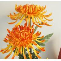 Buy cheap artificial flowers Spoon chrysanthemum PU from wholesalers