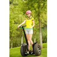 Buy cheap Beauty electric stunt scooter go kart electric Segway from wholesalers