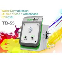 Buy cheap Spa Facial Cleaning Home Microdermabrasion Machine For Skin Care Acne Removal from wholesalers