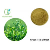 Buy cheap Green Tea Leaf Extract Treating Measles , 30% Polyphenols Powder from wholesalers